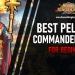 Best Pelagius Commander Rise of Kingdoms